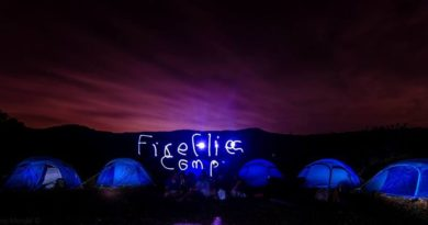 fireflies-camp