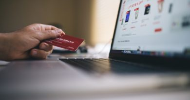 Risks while Shopping Online to Prevent Fraud