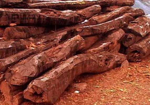 red sandalwood for acne treatment