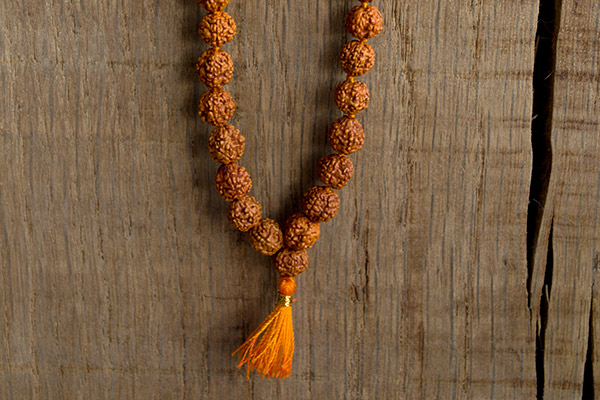 benefits of seven mukhi Rudraksha