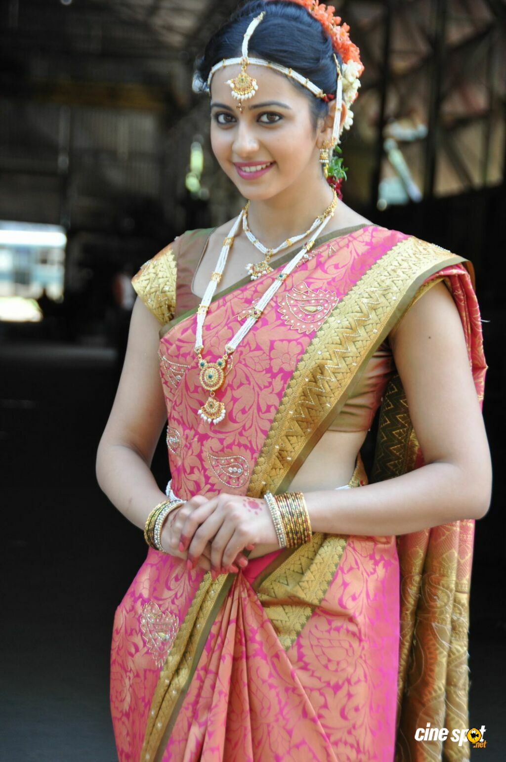 rakul preet singh hd images in saree5 -