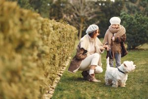 Benefits of Having a Pet for Senior Citizens
